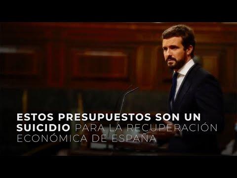 Estos presupuestos son un suicidio para la recuperación económica de España