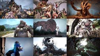 Видео к игре Black Desert из публикации: Black Desert - Демонстрация экипировки и монстров