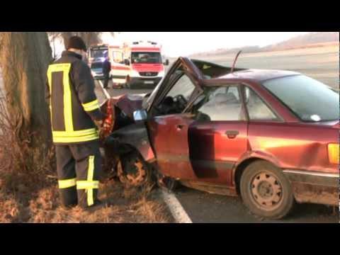 Frontal gegen Baum: Rettungshubschrauber
