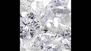 Plastic Bag - Drake & Future