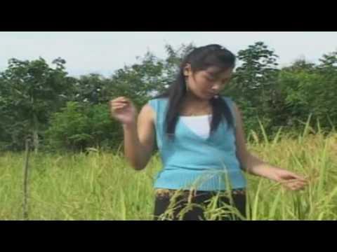 Raj Ntsia -  Tsav Xob Vaj (видео)