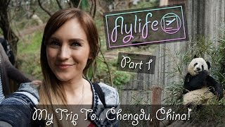 Chengdu China  city pictures gallery : My Trip To... Chengdu, China! | Part 1 | flylifeDanni