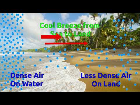 Effects of Heat on solid, liquid, and Gas