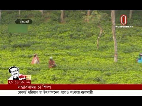 Tea traders worried despite record production (19-02-2020) Courtesy: Independent TV