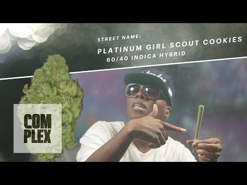 "Motor City High: ""Platinum Girl Scout Cookies"" Marijuana Strain 