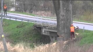 Konkretne drzewko! Obalenie topoli bożej koło mostu w Opace!