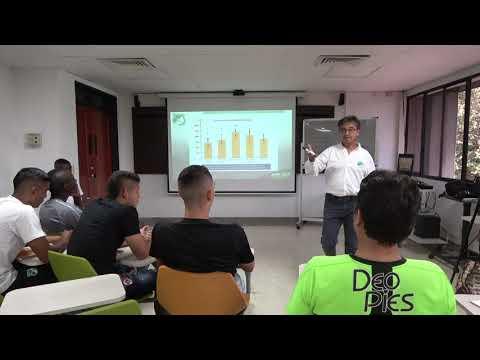 CLASE SISTEMAS ENERGÉTICOS #3 | USB