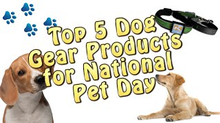 Top 5 Dog Gear & Products for National Pet Day 2016