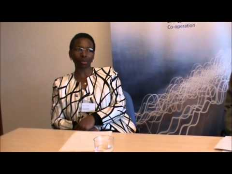 Interview with Ms. Mokgadi Modise, chief Director of Clean Energy, Department of Energy South Africa