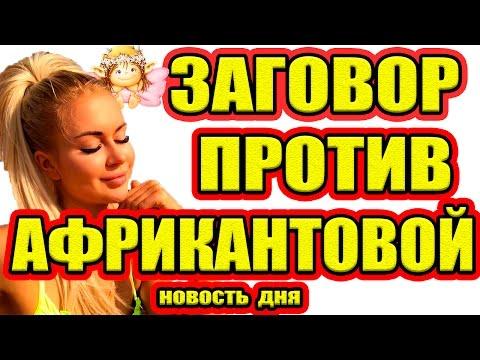 Дом 2 НОВОСТИ - Эфир 14.01.2017 (14 января 2017) (видео)