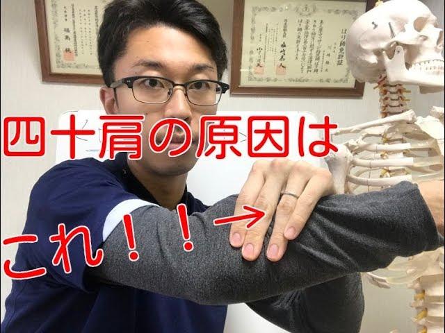 【肩 痛み】肩が痛くてあげられない人にはこれ!!