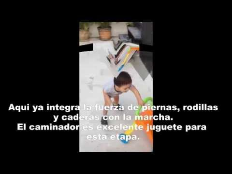 Watch video Síndrome de Down: Terapia física de 19 a 24 meses