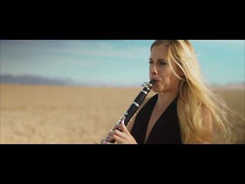 Lean On by Major Lazer (Four Play clarinet Music Video Cover)