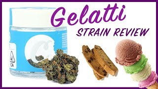 GELATTI STRAIN REVIEW (Cookies) by The Cannabis Connoisseur Connection 420