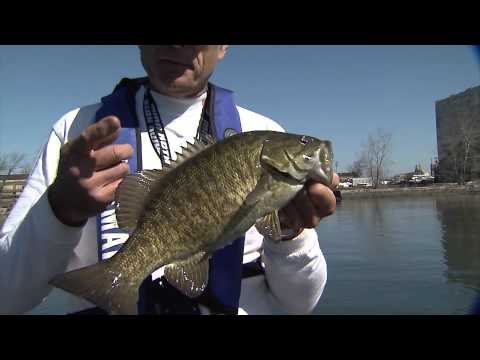 Cold-water Bass Fishing