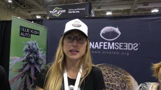 DinaFem Seeds REMO CHEMO Lift Expo 2017 by Urban Grower