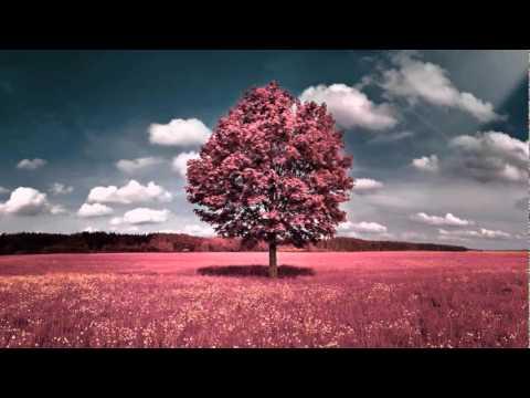 Closed - Big track by the DnB legend Netsky. Enjoy :) Artist: Netsky Song: Eyes Closed Genre: Liquid Drum & Bass Album: Eyes Closed & Smile EP Label: All Sorts - waxzKi.