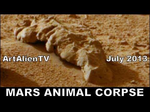 "Alien Animal Corpse on Mars: NASA Curiosity: ""Skewermorph"". MARS ZOO ArtAlienTV 1080p"
