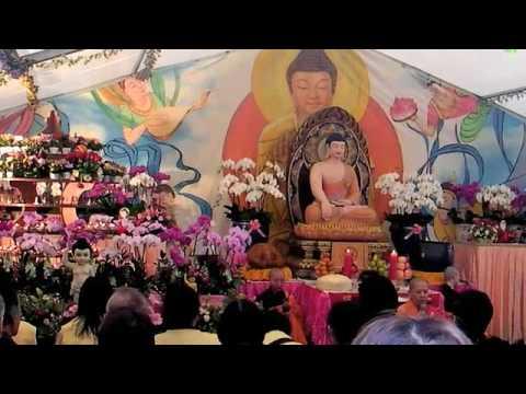 Video Buddhas Birthday chanting download in MP3, 3GP, MP4, WEBM, AVI, FLV January 2017