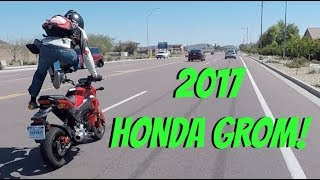 9. My 2017 Honda Grom!