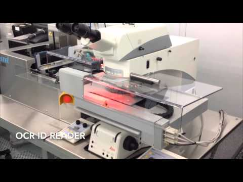 Semiconductors wafer defect review station