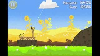 Angry Birds Seasons Summer Pignic Level 25 Walkthrough 3 Star