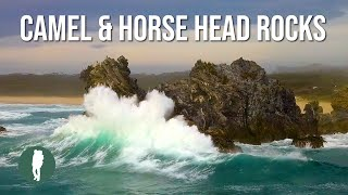 Camel Rock and Horse Head Rock, Bermagui, NSW South Coast