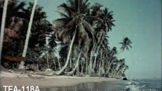 Video Singapore - The Lion City, 1957 MP3, 3GP, MP4, WEBM, AVI, FLV Februari 2019