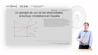 Microeconomía I - La Elasticidad De La Oferta Y La Demanda (8) - Alfonso Rosa