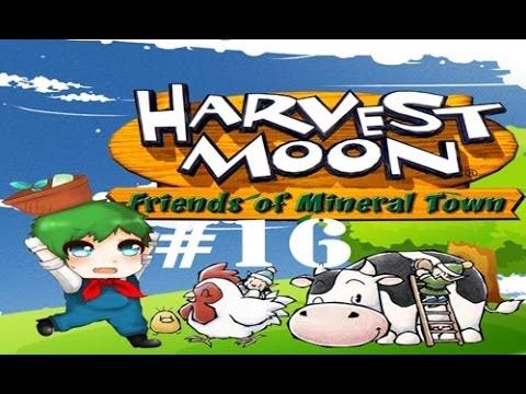 [Harvest moon : Friends of mineral town] : ครัวกับวัวที่รัก [16]