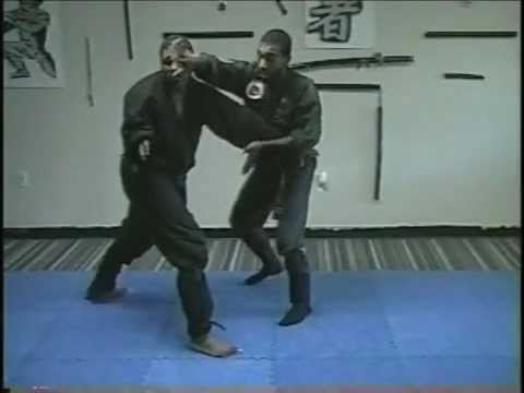 Ninjutsu Taijutsu ( Empty hand Combat)