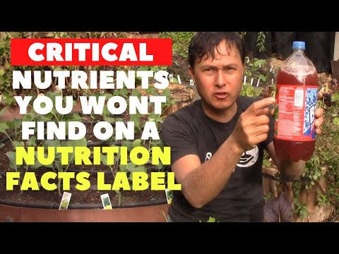 Nutrients You Will Never Find on a Nutrition Facts Label Needed For Perfect Health
