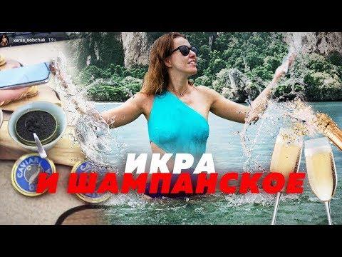 СОБЧАК УМЕЕТ ОТДЫХАТЬ  Алексей Казаков
