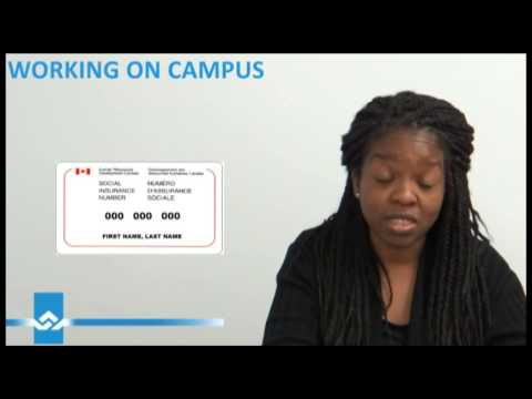 Working on Campus without a Work Permit Video