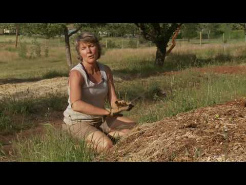 Ananda Village Sustainable Living Food Forest Permaculture Project 2009