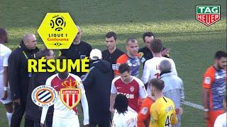 Video Montpellier Hérault SC - AS Monaco ( 2-2 ) - Résumé - (MHSC - ASM) / 2018-19 MP3, 3GP, MP4, WEBM, AVI, FLV Maret 2019