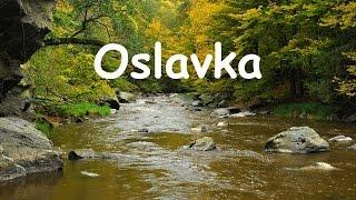 Video F.T.PRIM - Oslavka