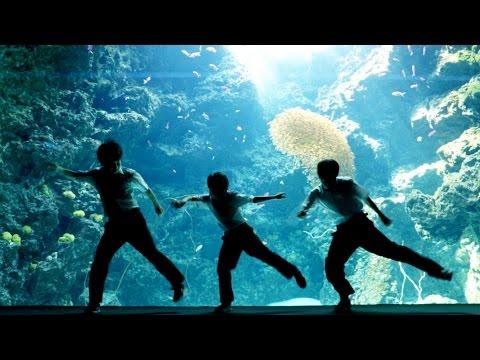 【夏のいわき】アクアマリンふくしまで 中学生ストリートダンサーが踊ってみた 【FORCE ELEMENTS】