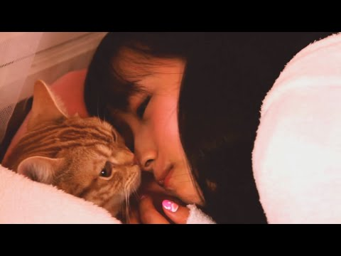 『ふわふわLOVE』フルPV ( #夏野香波 )