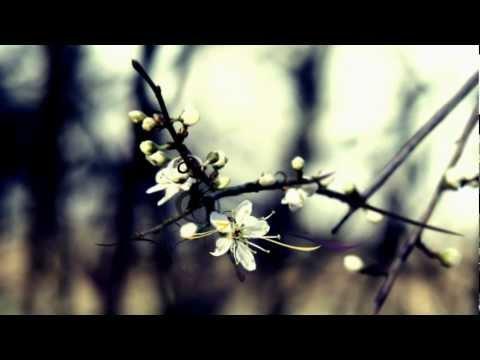http://www.youtube.com/watch?v=ny_90mIletI