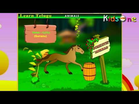 Learn - Domestic Animals - Kids Educational Videos