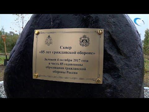 Новгородские спасатели отметили 85-летие гражданской обороны России