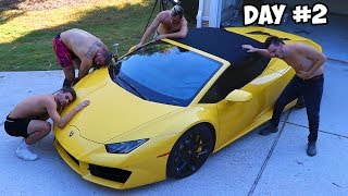 Video Last To Remove Hand, Gets Lamborghini Challenge MP3, 3GP, MP4, WEBM, AVI, FLV November 2018