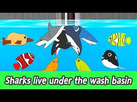 [EN] Sharks live under the wash basin! kids animals animation, sharks adventureㅣCoCosToy