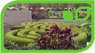 #989 Central Garden - Im Paradiesgarten