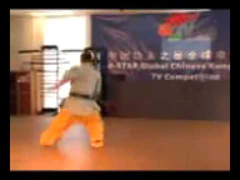 Learn Shaolin Forms 2