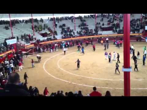 Encierro valdemorillo 9-2-2013