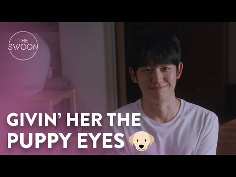 Who could resist those puppy eyes? | One Spring Night Ep 16 [ENG SUB]