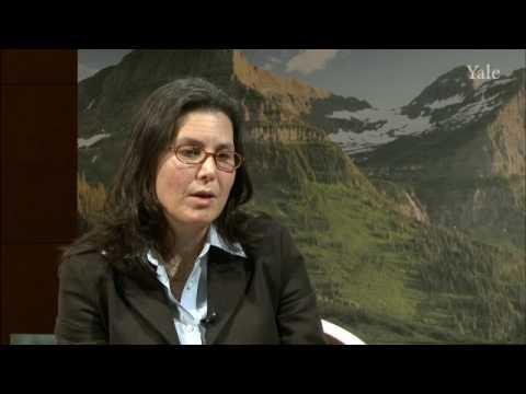 Prof. Jennifer Ruger: Globale Gesundheit  & IOM-Bericht