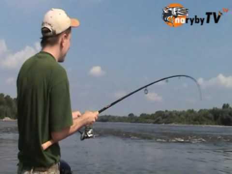 WĘDKARSTWO Rzeczne łowienie
